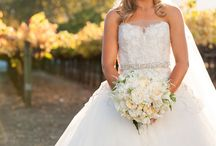 Weddings In Vineyards / Weddings In Vineyards