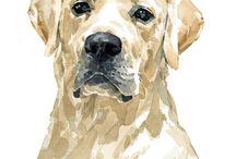 állat festmények