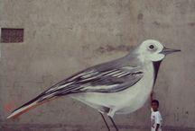 Big bird  / Graffiti art ,spray paint,street canvas