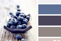 Color Palettes / Diffrent palletes to help redecorate.