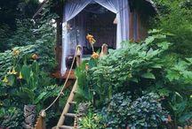 Amazing backyard / ideas for my backyard