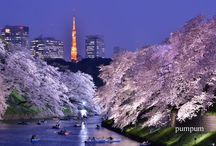 Wounderful JAPAN