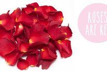 Valentine ideas! / Ideas for valentines day