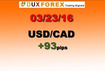 Daily Forex Profits Performance 03/23/16 (Second Trade)