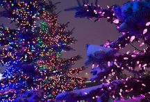 Holiday Lights / Great Shots of Christmas Lights from around the world.