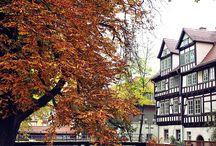 ♡ Erfurt Fotografie