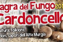 Eventi a Ruvo di Puglia / Eventi in Puglia nella città di Ruvo di Puglia (Ba)