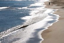 OBX / Scenes from the beautiful and wonderful Outer Banks of North Carolina / by Victoria Massey