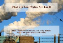 Our Toxic World / Information about toxins in your air, water, food, and more