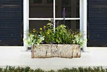 Window Boxes / Inspiring window boxes for your home.