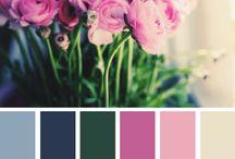 Inspiração de Cores / Paleta de cores