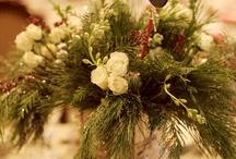 Christmas  / by Marlene Dugan