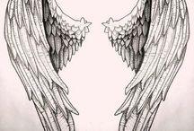 křídla drawing