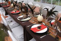 South African theme