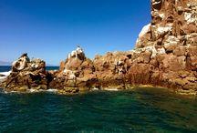 Ecoturismo / Destinos, consejos y todo lo que tienes que saber para realizar ecoturismo.