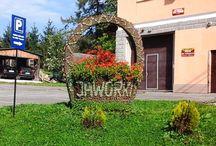 Jaworki