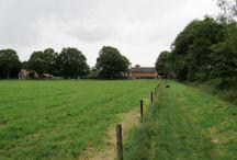 Wandelen in Midden-Twente / In het gebied van Hellendoorn-Almelo-Vriezenveen zijn ook mooie plekken te vinden waar het mooi wandelen is.