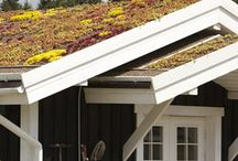 Green roofs. Зеленые кровли made by СпецПаркДизайн / #greenroof #зеленаякровля #саднакрыше #ландшафт #ландшафтныйдизайн #очитки #сосна #соснагорная #зеленая #кровля #крыша #сад #на #крыше