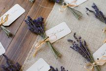 Hochzeit / Lavendel
