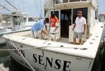Cape May Fishing Charters