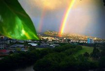 Taste of Hawaii / Where I would go, do and eat in Hawaii! / by Ellen Carter, Broker