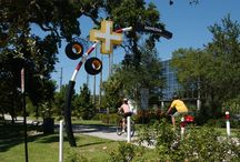 Pinellas Trail / Rent one of our bicycles and take a ride through this 47-mile path.
