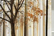 Color Inspiration: Fall Prints