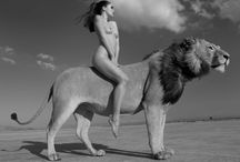 Exotic animals Ladies / Exotic animals&Riding