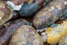 Basis stone for grow
