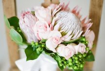 Protea Fynbos flowers / In celebration of South Africa's remarkable indigenous #flowers that have found a worldwide following. Contact us if you love these Protea-styled bouquets. We source then from local growers and green-friendly collectors.   A collection of the diverse  ways to use Proteas in wedding and event arrangements. #madeofSA #ProudlySA