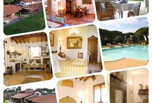 Farm Holidays & Hotels