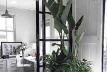 Bureaux avec  plantes