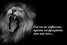 Leo / Leo,lions,ΛΙοντάρια