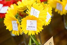 Seating Chart ideas / by CLH Weddings