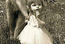 crianças e elefantes