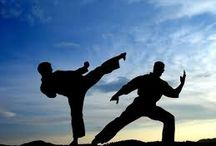 """Martial Art Training Centre -  jiujitsulife.com/ / iu-Jitsu (meaning """"Gentle Art"""") relies on leverage and technique rather than explosiveness and strength allowing any person regardless of athletic ability to learn and practise it successfully."""