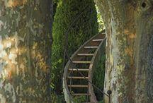 Stairways & Steps