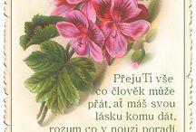 pratelum