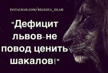 Позитив и мудрость / То, чего так не хватает в жизни...