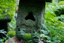 ~For The Love Of Moss~ / by Marla Corson