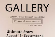 Ultimate Stars (August 19 - September 3) / Ultimate Stars is a two-week showcase of local artists who explore their creativity through visual art and music at the 117 Gallery in the Ann Arbor Art Center, curated by Doug Coombe.   Photos courtesy of Katie Alexis Photography: http://www.katiealexisphotography.com/