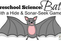 Theme :: Bats