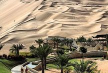 UAE: Our Adventure