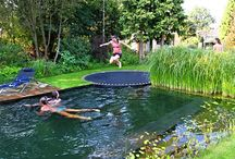 Trampolin am pool