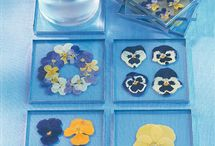Pressed Flowers / There are so many things you can do with your fresh flowers.  I like to dry them and press them.  Here are some great DIY ideas for pressed flowers