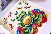 Floresta Encantada - Sapo / Enchanted Forest - Frog