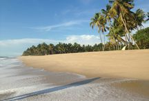 Vaidya's Ayurveda Village / Janesh Vaidya's Ayurveda Village is an ayurveda retreat situated on the coast of the Arabian ocean in Alleppy district, Kerala, South India.
