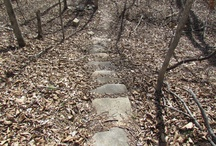 Follow your path / by Julie Steigerwalt