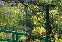 I målarens trädgård