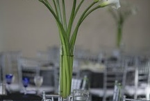 May 10th Event / White flowers contemporary feel